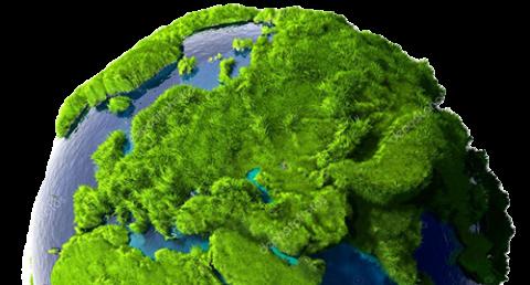 ekologia eco box